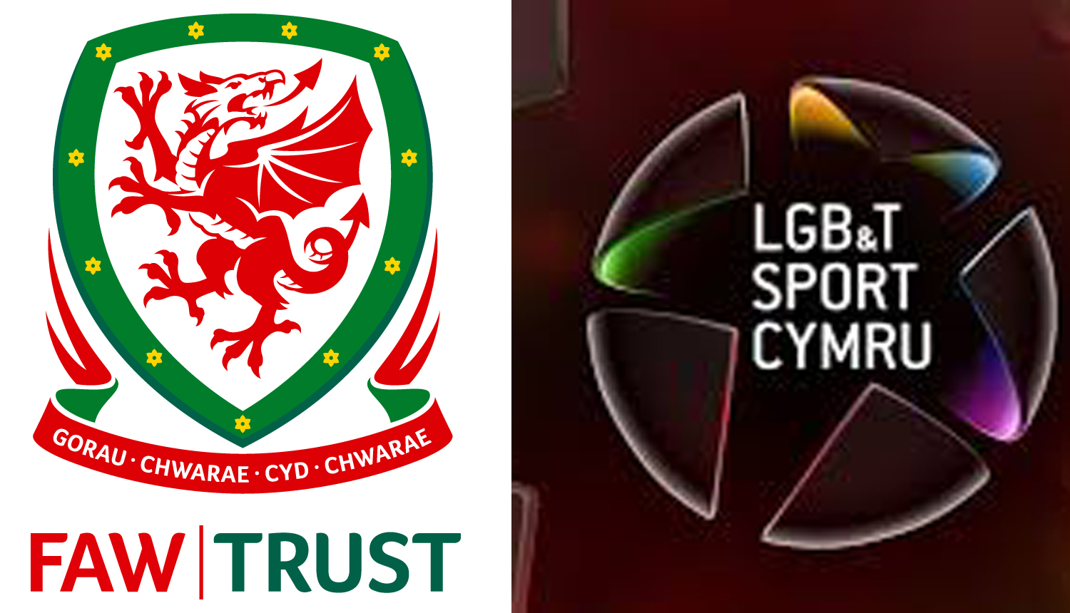 Volunteer Opportunity: FAW Trust and LGB&T Sport Cymru Champion