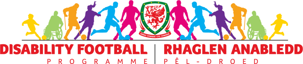 FAW Trust becomes the first organisation in Wales to receive Disability Sport Wales award
