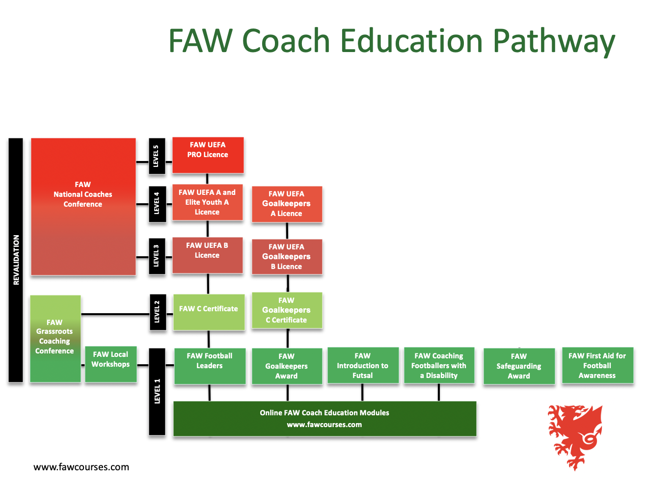 FAW Pathway (New).png